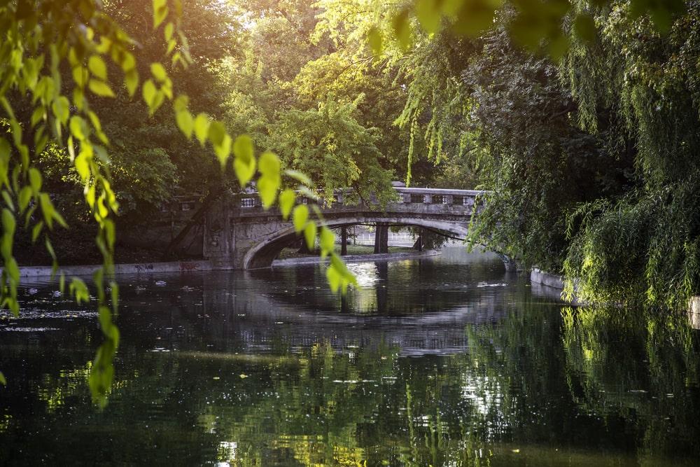 Parcuri în București